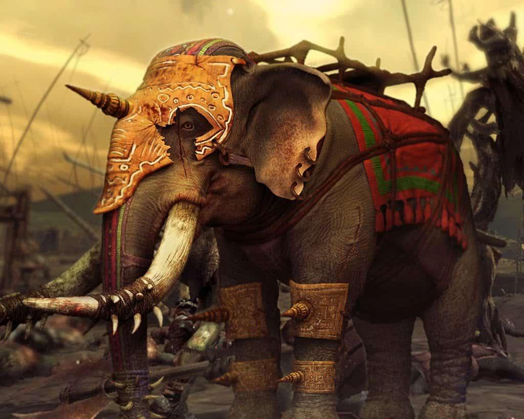 Eléphant prêt pour le combat